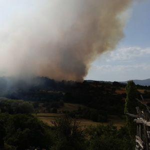 Трајковски: Нема жртви во пожарот кај Пасјак, потребна ни е секаква помош