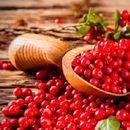 БРУСНИЦА: Здрава и вкусна пpeвeнтивa