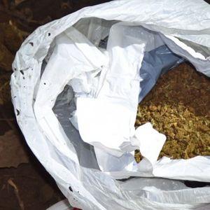 UHAPŠEN SUBOTIČKI DILER, zakopavao marihuanu ispod zemlje!