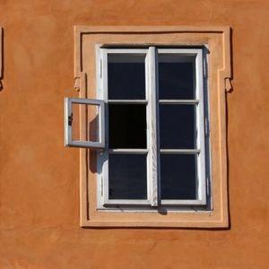 HTEO JE DA UNIŠTI PTIČIJE GNEZDO! Pa ostao bez prozora!
