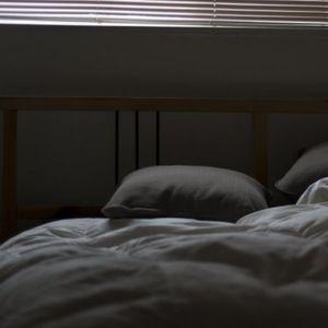 ON JE NAŠAO KREVET I DRUŠTVO! Kada vlasnici vide gde spava neće se baš oduševit!