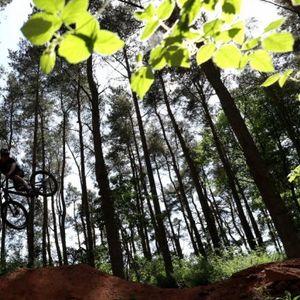 EVROPA U NOVOM SADU! Srpska Atina biće domaćin najboljim biciklistima!
