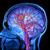 Ново истражување покажа дека човечкиот мозок станува полнолетен на 30 години