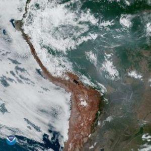Амазонија гори поради неконтролирана сеча! Чадот се гледа од Вселената!