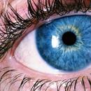 Научници создадоа вештачко око кое функционира и изгледа исто како вистинското