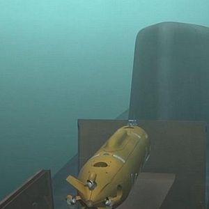 Путин е сериозен во заканите – Русија има подводни нуклеарни дронови