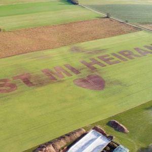 Германски земјоделец ја запроси девојката со натпис на  јачменово поле