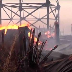 Десетици повредени , илјадници животни загинаа во катастрофалните пожари во Сибир