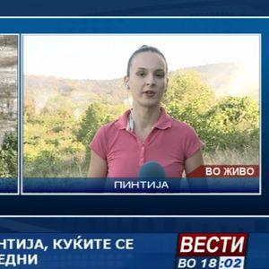 Пожар над скопска Пинтија, куќите се засега безбедни