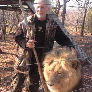 Маж го изеле лавовите што ги чувал во својот двор