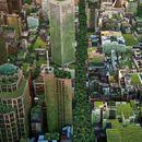 Научно докажано: Жителите на градовите со повеќе зеленило, живеат подолго