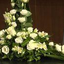 Колегите со солзи се простија од Неда Арнериќ (ВИДЕО)