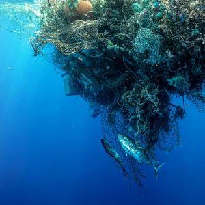 Само со една експедиција извлекле рекордни 103 тони смет од Тихиот Океан (ВИДЕО)