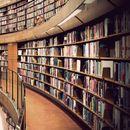 Универзитетска библиотека во САД е затворена поради отровни пајаци