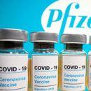 РСЕ: Од Ковакс за Македонија, БиХ и Косово по 100.620 дози на вакцината Фајзер
