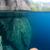 ВИСТИНСКИ РАЈ: Оваа вода е толку проѕирна што изгледа дури нереално