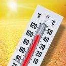 ПОРТОКАЛОВА ФАЗА: Продолжуваат мерките за заштита од топлотен бран