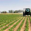 Дел од земјоделците се изземени од ограничувањето за движење за викендите