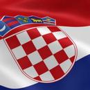 Последната деценија опаѓа бројот на склучени бракови во Хрватска