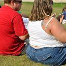 Ново истражување тврди: На дебелината влијае квалитетот, а не количината на внесената храна
