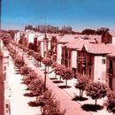 Вистинска убавина: Ќе ја препознаете ли оваа скопска улица?