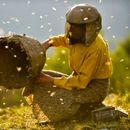 """""""Медена земја"""" номиниран за најдобар документарец на """"Европските филмски награди"""""""
