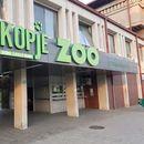 Во ЗОО- Скопје се роди првото бебе годинава
