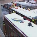 Двокатен автобус удри во автобуска станица, едно лице го загуби животот, 23 тешко повредени