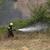 Пожарот кај Пинтија ставен под контрола, нов пријавен во Сопиште