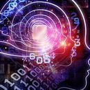 Експерти: Вештачката интелигенција ќе ни овозможи комуникација со животните