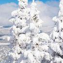 Нови снежни врнежи од понеделник, надлежните подготвени