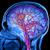 Човечкиот мозок станува полнолетен на 30 години