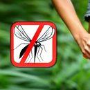 Направете домашно средство за заштита од комарци
