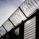 Приведен криминалец за издржување затворска казна