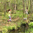 Дали играњето во шума може да го подобри имунитетот на вашите деца?