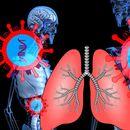 Руски научници подготвуваат биочип за тестирање на коронавирусот