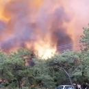 Турција: Изгасени 152 од 163 пожари