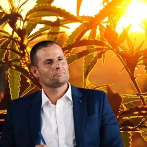 Can We Please Not Turn Malta's Upcoming Cannabis Debate Into A Partisan Tit For Tat?