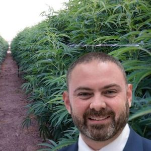 No Smoking Allowed: An Early Look Inside Malta's Planned Cannabis Associations
