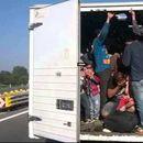 Во камион на патот Штип-Радовиш пронајдени 40 мигранти