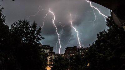 Невреме во Србија – силен ветер откорна дрвја
