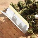 """Запленета марихуана во возило кај депонијата """"Буково"""""""