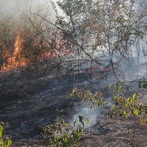 Пожар над Усје