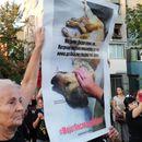 Активисти за заштита на животните упаднаа на собир на Шилегов и Марин