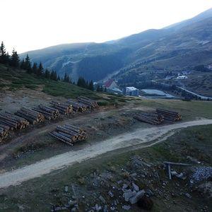 Еко Герило: Масовна сеча на шума на Шара за да се градат хидроцентрали