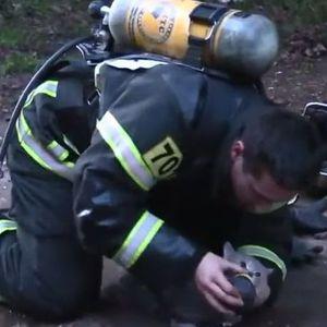 По интервенција за спасување на 35 луѓе, пожарникар 7 минути се бореше за животот на мачка