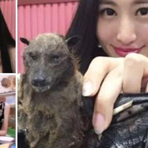 Кинезинката што со прсти кинеше и јадеше лилјак, јавно му се извини на светот