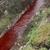 Дежурни инспекциски екипи утврдуваат зошто е црвена водата на реката Серава