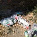 Охрид се дави во ѓубре, група граѓани се собраа за да го собираат отпадот