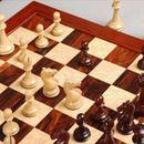 """Шаховскиот клуб """"Алкалоид"""" дел од Европскиот клупски куп во Струга"""